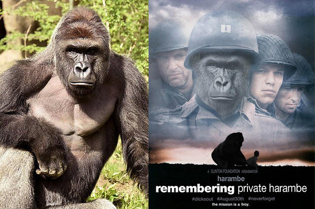 how-harambe-are-you-2-3579-1471999478-3_dblbig